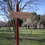 Camino Real de Guadalupe
